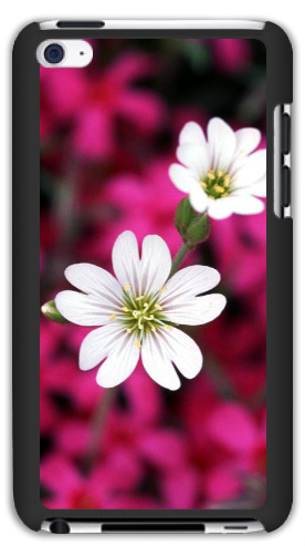 White Flowers on Pink iPod Touch 4 Matte Case