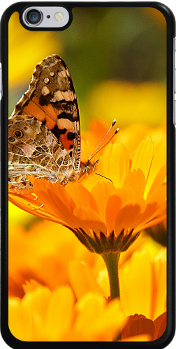 Butterfly on a Flower iPhone 6 Plus Thinshield